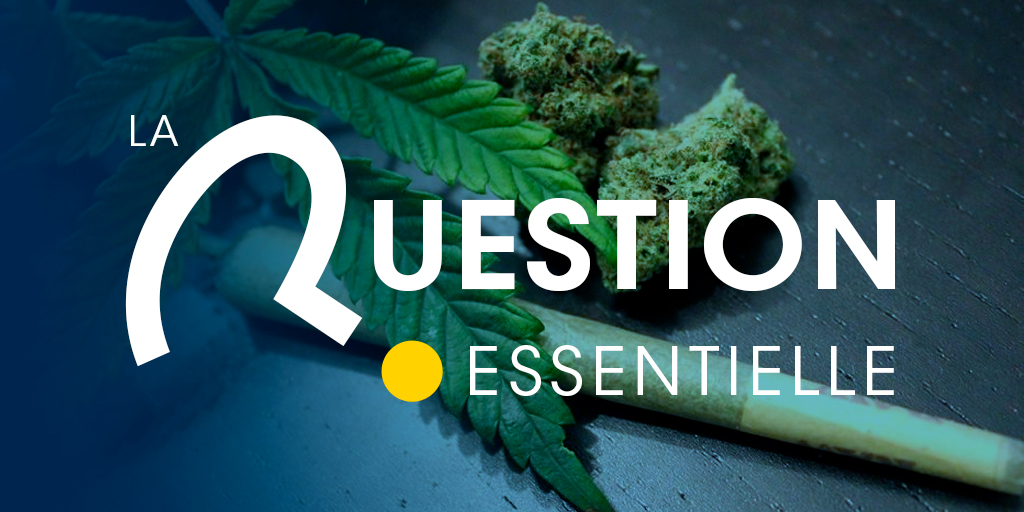 Dans le cadre d'un hypothétique débat national sur la consommation de drogue en France, seriez-vous favorable à la dépénalisation du cannabis en France?